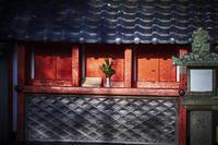朝の散歩(3cut)奈良 -     ~風に乗って~    Present