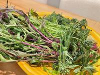 新鮮野菜で2品 - おいしい便り