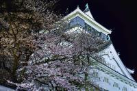 小倉城にて - ライカとボクと、時々、ニコン。