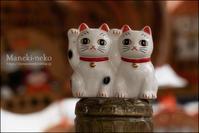 何を招くか招き猫 - すずちゃんのカメラ!かめら!camera!