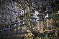 談山神社(7cut)  奈良 -     ~風に乗って~    Present