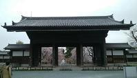 東郷寺の桜 - jujuの日々