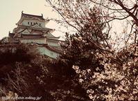 himeji-castle_20210326 - Shin2 Limited