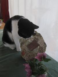 花を飾る - ギャラリーファブリル