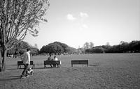 隣町の公園 - そぞろ歩きの記憶