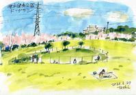 いよいよ、桜の出番(3)ファミリーテントのお花畑 - デジの目
