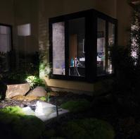 中庭にハリネズミ登場/ A Hedgehog In Our Inner Garden - アメリカからニュージーランドへ
