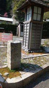 花沢の里に再訪してきました - ウンノ接骨院(ウンノ整体)と静岡の夜