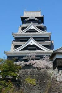 令和3年春 熊本城に桜を見に行く - Photograph & My Super CUB110 【しゃしんとスクーター】