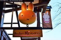京都嵯峨嵐山「みっふぃー桜べーかりー」でかわいいミッフィーパンを味わう - ワタシの旅じかん Go around the world!
