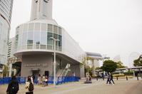 横浜へお花見散歩、3/5 ~ 桜木町と「イルキャンティ チェリエ」 - 某の雑記帳