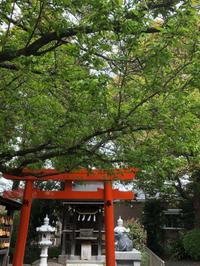 近くの神社までお散歩。。。 - umi no oto ♪