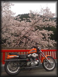 "『April...』 - ""Live  to  like  carburetor"""
