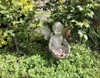 4月の庭とサロンから - ゆらゆらあゆーら~New Beginning for Love(愛への新しい始まり)~