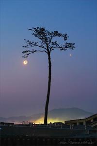 第27回 環境フォトコンテスト 写真の力 部門 - 遥かなる月光の旅