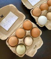 卵のバイキング - めでこのゴハンノオト