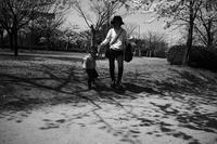 櫻の日はスナップを#0220210331 - Yoshi-A の写真の楽しみ