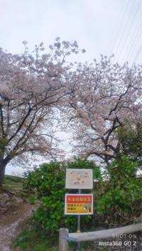 近所の桜散りゆく5 - 魔王の独り言 の続編