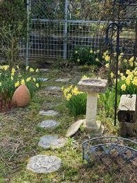 春の訪れ - ゆりかごのつぶやき