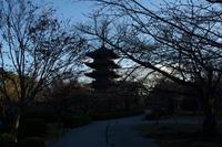 2021京都奈良旅行 - sto diary