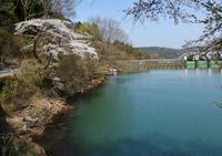 4月1日、妙義湖散策編 - 星の小父さまフォトつづり