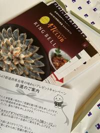 三幸製菓からギフトカタログ - funkyroom