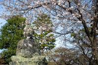 2021 桜の記憶 - ろーりんぐ ☆ らいふ