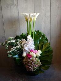 御就任のお祝いにアレンジメント。「高さ出して、華やかなイメージ」。北2条にお届け(O様ご注文分)。2021/04/01。 - 札幌 花屋 meLL flowers