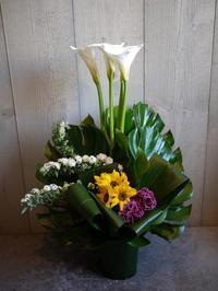 御就任のお祝いにアレンジメント。北野7条にお届け(K様ご注文分)。2021/04/01。 - 札幌 花屋 meLL flowers