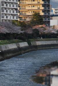 御幸橋の上から - まずは広島空港より宜しくです。