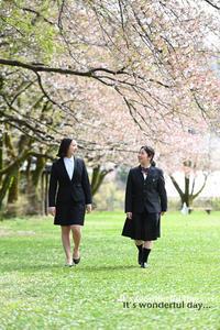 今年最後の桜ロケーション - 酎ハイとわたし