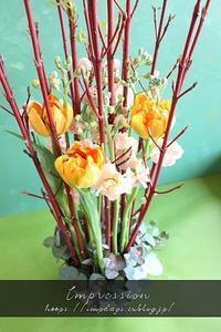 定期装花からサンゴミズキ - Impression Days