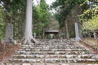 常照皇寺(山国御陵)の樹齢650年と伝わる「九重桜」。 - 坂の上のサインボード