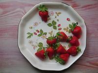 イチゴは野菜!? - 十色生活