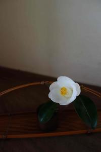 美登英利さん、初のデザイン書マニュアル本出版 - g's style day by day ー京都嵐山から、季節を楽しむ日々をお届けしますー