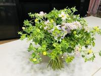 春のシュトラウス♪ - Flower Days ~yucco*のフラワーレッスン&プリザーブドフラワー~