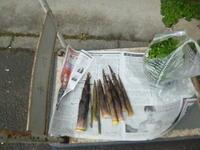 見えない配達夫と収穫 - サンカクバシ 土と私の日記