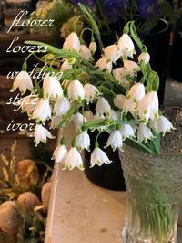 定休日です。 -  Flower and cafe 花空間 ivory (アイボリー)
