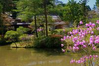 奈良市柳生円城寺 - 写真を主とした日記です