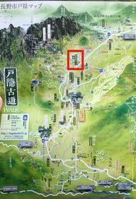 長野2020年8月☆戸隠散策 - らすこり日記