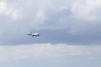 主に白、黒、青 - 南の島の飛行機日記