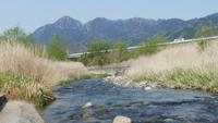 三滝川 - 日々の風景