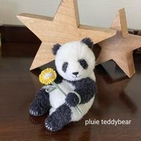 お座りパンダちゃん タイムロマンさんへ - pluie teddybear