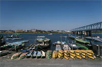 江戸川にて - りゅう太のあしあと