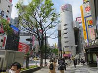 4月8日㈭の109前交差点 - でじたる渋谷NEWS