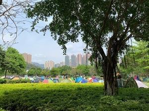 コロナ禍で人気すぎて品切れ!ピクニック用テントを入手☆Picnic Tents are Popular in Hong Kong - Little random talks in 香港♪