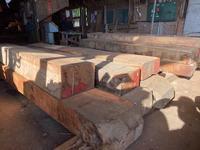 カリン像が引く穴のある木 - SOLiD「無垢材セレクトカタログ」/ 材木店・製材所 新発田屋(シバタヤ)