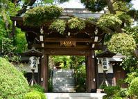 花のお寺高蔵寺 - ぶりんの部屋