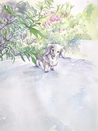 one day no.21 - < Eyes of a Dog >