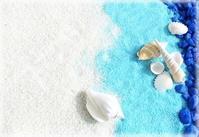 「貝がら」 - 牧野節子の部屋